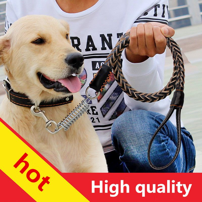 Dog leash dog chain big dog