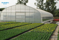 baolida low cost vegetable greenhouse for sale