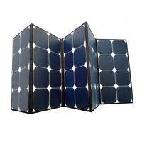 Portable Kits 220w 2 pcs 110w Folding PV Solar Panel for RV Boat Off Grid with Controller