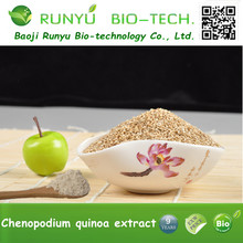 Approved 100% Natural Quinoa powder Supplier