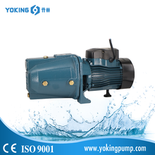 High quality domestic Jet 100L water pump