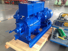 Word famous brand Vacuum Pump, NASH BRAND