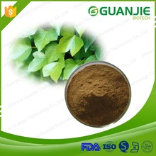 Factory Supply High Quality Ivy Leaf Extract