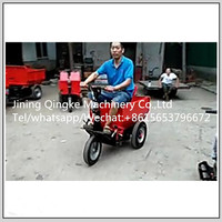 High quality Strong power 1100W 48V cargo tricycle 3 wheel electric tricyle