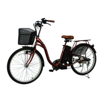 High Quality Long Range Powerful Electric Bike