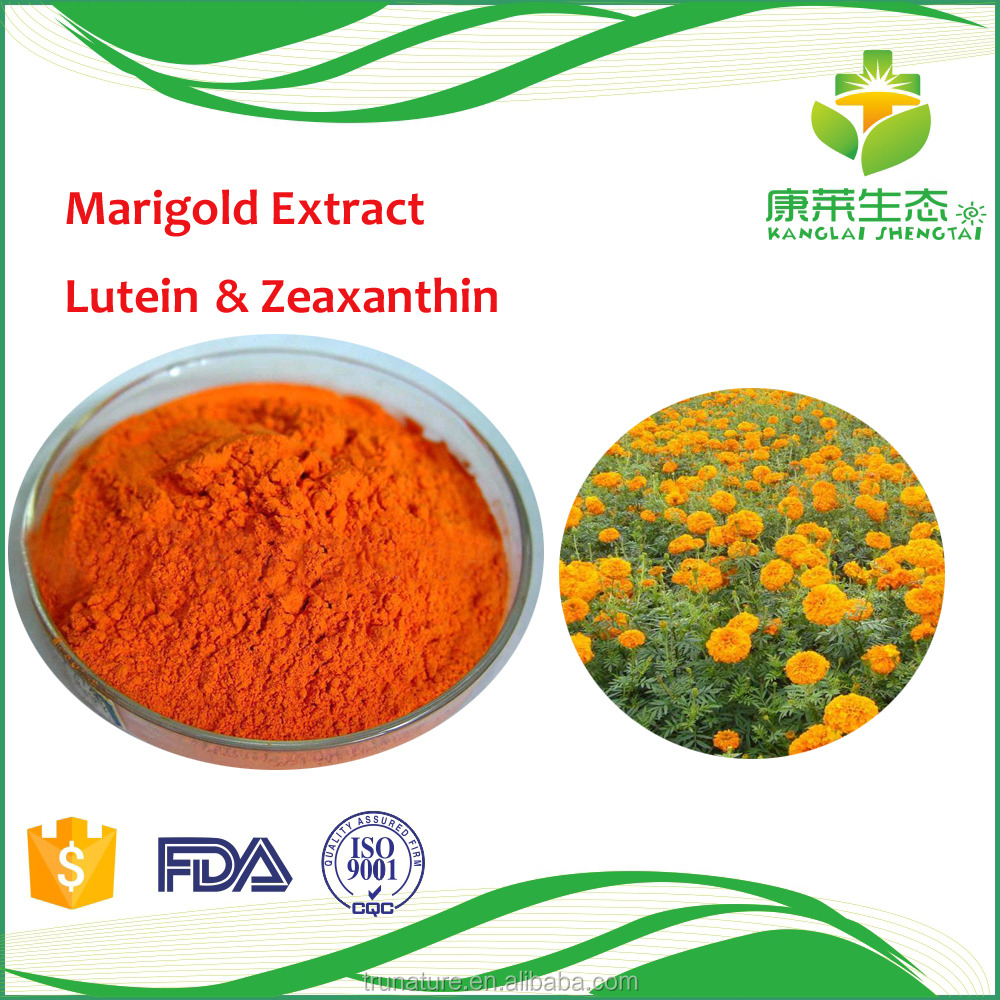 Natural Herb pot marigold extract for feeding chicken