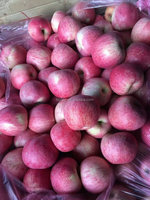 Wholesale price apple fruit Qinguan apple from China
