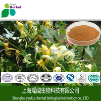 Honeysuckle Extract, Lonicera japonica extract,Chlorogenic acid