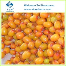 Frozen Fruits For Seabuckthorn In China