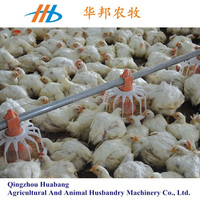 Factory sale price! poultry automatic feeding equipment chicken house made in china