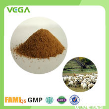 Professional Feed Additives Top Quality Probiotics Pig Feed