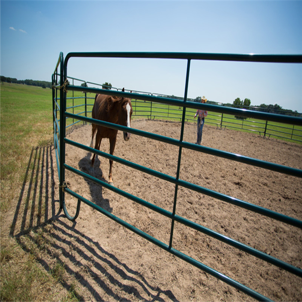 Galvanized / Powder coated / green painted Cattle yard panel , corral panel Alan <strong>002</strong>