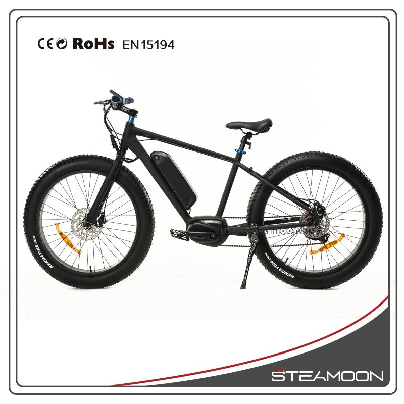 Newest 250W/36V USA used fat tire bike wholesale electric bike/ebike/electric mountain bike