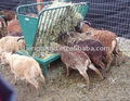 cheap high quality durable hot dip galvanized The Goat Feeder