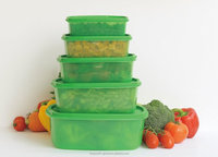 stay fresh green food storage container