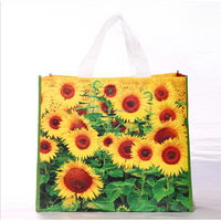 Promotional Recycle Non Woven Bag