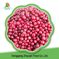 China High Quality Fresh Frozen Berries Lingonberries