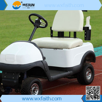 Hot Sale 2 person electric mini golf cart