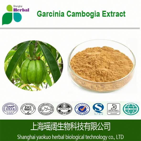 GMP Certified contract manufacturer/Private label Halal Garcinia Cambogia capsule 75% HCA Extract (weight loss support)