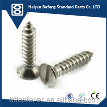 ss304 self tapping screw