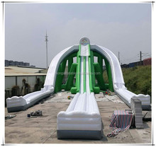 Largest Inflatable Waterslide City Park Outdoor Playground Giant Hippo Water Slide For Sale