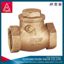 non-return backflow prevention/check valve dn100