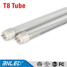 1200mm 4 feet T12 to T8 Fluorescent Retrofit LED Bulbs with DLC, UL, Lighting Facts, LM79, LM80
