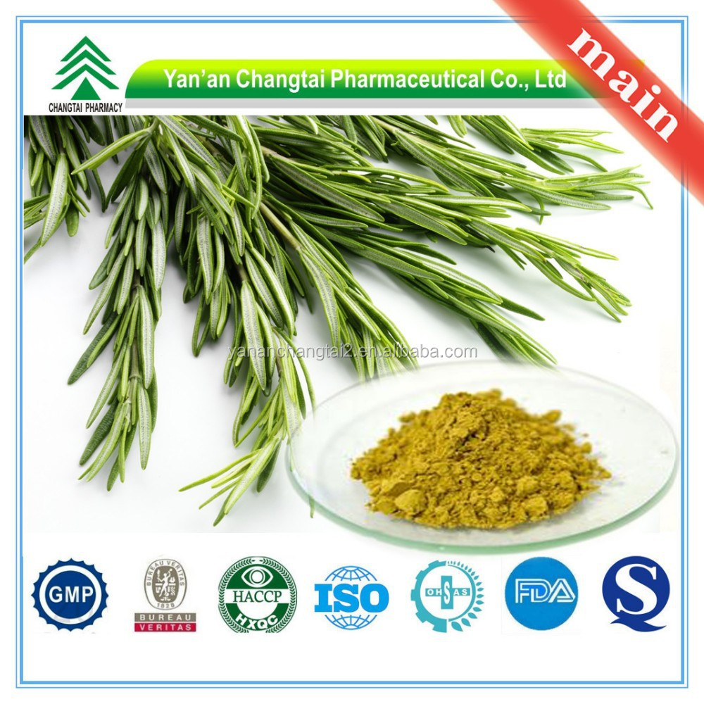 Hot Sale GMP Certificate 100% Pure Natural Rosemary Extract Ursolic Acid