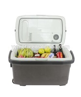Hot selling plastic cooler mini box for wholesales GM109