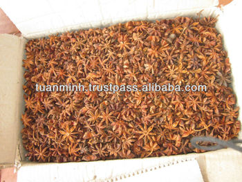 AUTUMN CROP HIGH QUALITY STAR ANISEED (skype:tuanminhco)