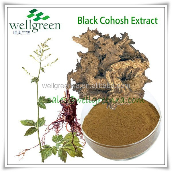 100% Natural Black Cohosh P.E for health of women