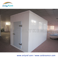large capacity cold room for ice storage , industrial freezer room for ice cream storage