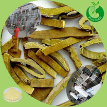 Best quality berberine hcl amur cork tree bark extract