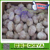 2014 natural garlic from china