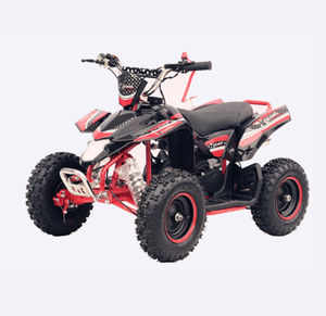 Chinese Old Quad Bike 49CC Mini 4-Stroke ATV Motors For Sale