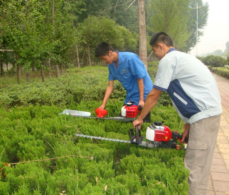 protable gasoline double blade hedge trimmer SLP600