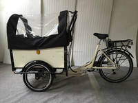 European style pedal assisted cargo bicycle 3 wheel electric folding bicycle