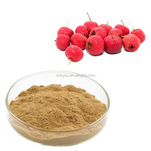 hawthorn powder10:1\hawthorn berry extract\hawthorn extract