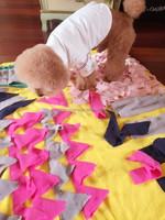 Custom size fleece pet mat , Dog pet/pet bed