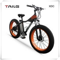 250w Electric lithium battery bick snow ebike aluminum alloy dongguan mountain bike for sales XDC