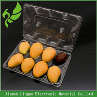Customized PVC disposable clear plastic 2016 fresh fruit tray