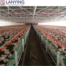 steel structure Chicken Egg Brolier Poultry Farm