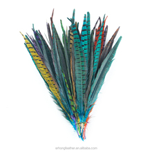 Wholesale colorful long dyed pheasant feather