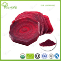 Manufacturer supply beet root powder whole foods