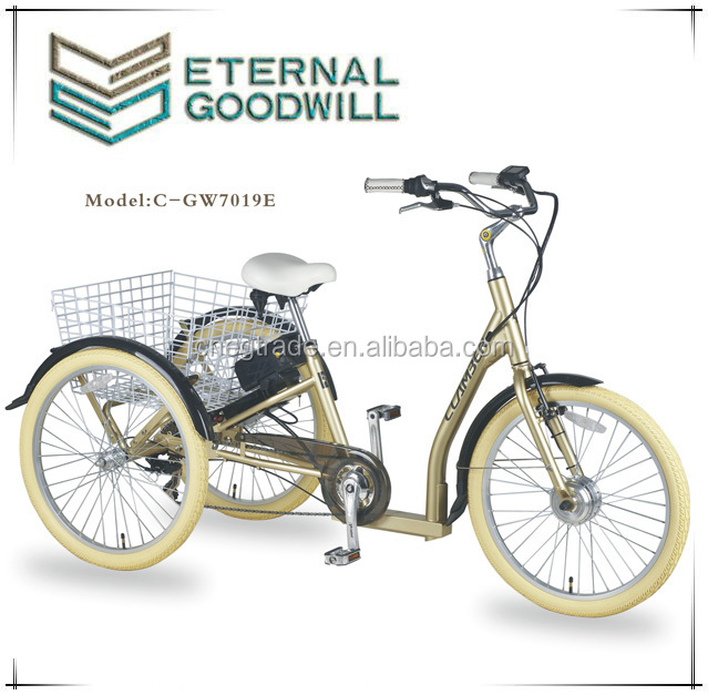 Eternal Goodwill front wheel shopping electric cargo tricycle /bike / bicycle for childrenGW 7019E
