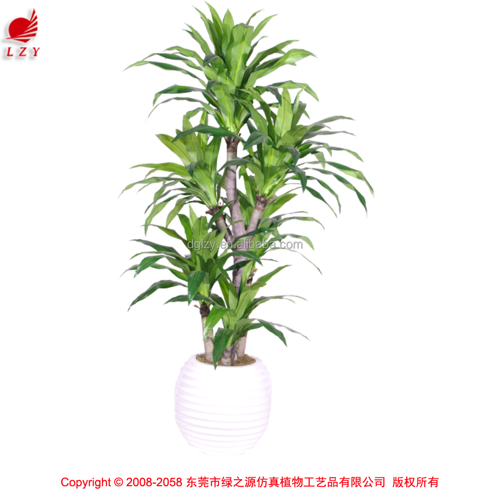 Best selling items large plastic ficus bonsai tree for outdoor decoration