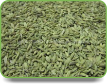 Fresh Fennel Seeds , fennel seed price