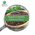 ISO Certificate Black Pepper Extract Piperine 98% with Best Price