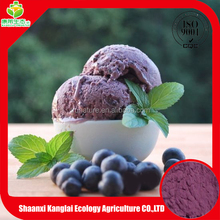 Free Sample Acai Berry/Berry Juice Powder Extract with Promotion Price