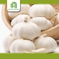 Brand new dried whole garlic with high quality
